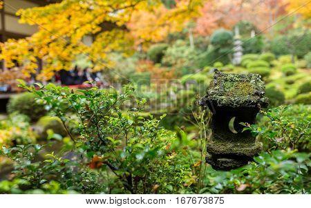 Japanese temple garden in autumn