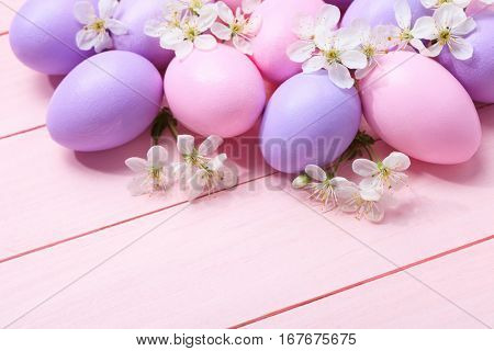 Easter eggs and  white flowers on  pink wooden table.