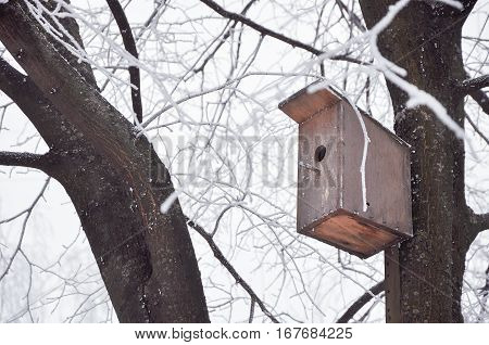 nesting box on a tree covered with hoarfrost in frosty winter day