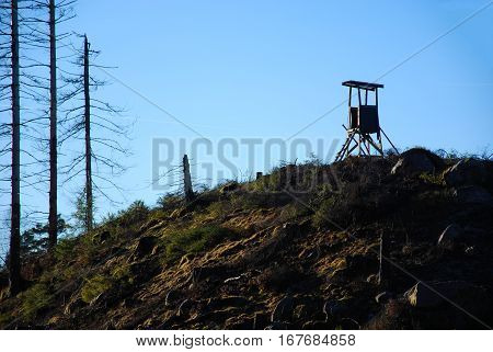 Hunting tower on the top of a hill in a clear cut forest area