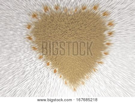 the inscription of the heart shape with daisy flowers and and effect