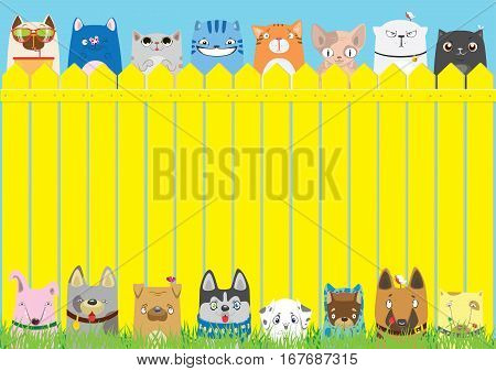 Cartoon dogs and cats on the yellow fence on blue sky background. Cute pets background