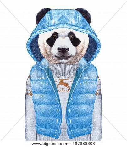 Animals as a human. Panda in down vest and sweater. Hand-drawn illustration, digitally colored.