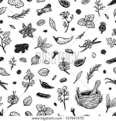 Spices & Herbs, Pattern.