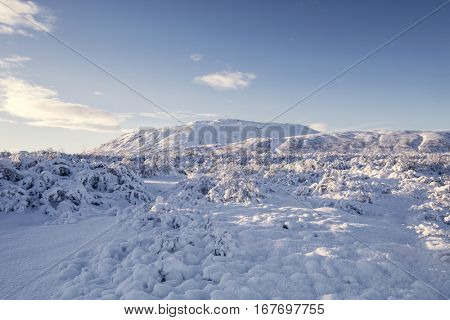 Amazing snow covered winter landscape in Iceland