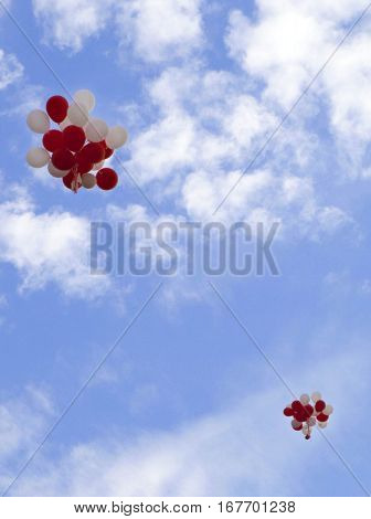 bunches of colorful balloons take off for the holiday