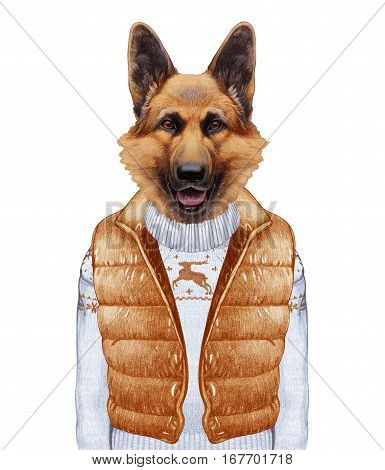 Animals as a human. German Shepherd in down vest and sweater. Hand-drawn illustration, digitally colored.