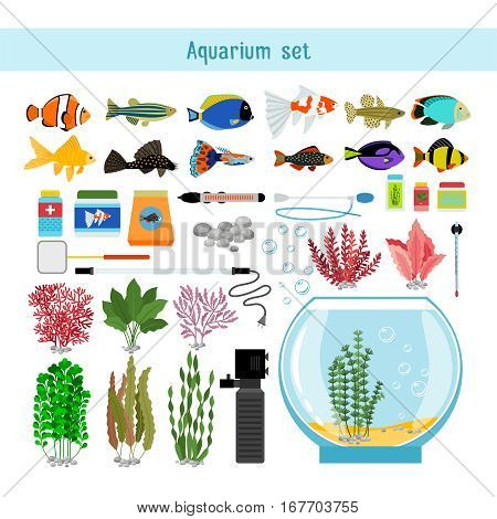 Aquarium underwater vector elements, corals and stones isolated on white background. Thermometer, lamp and accessory for aquarium illustration