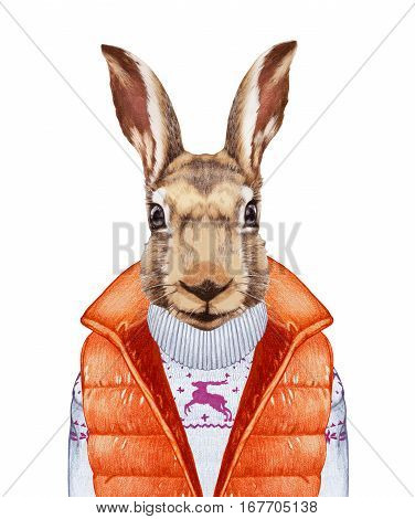 Animals as a human. Rabbit in down vest and sweater. Hand-drawn illustration, digitally colored.