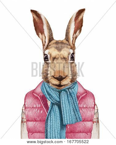 Animals as a human. Hare in down vest, sweater and scarf. Hand-drawn illustration, digitally colored.