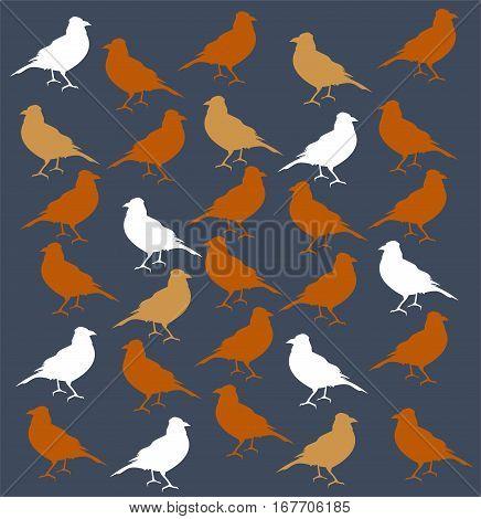 Flying birds. Stock vector. Vector bird pattern