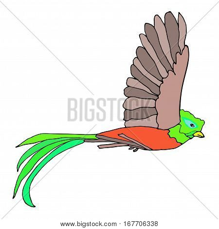 Quetzal Bird flying. Resplendent Quetzal. Vector illustration.
