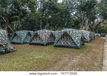 Pitch a tent for the camping to stay overnight.