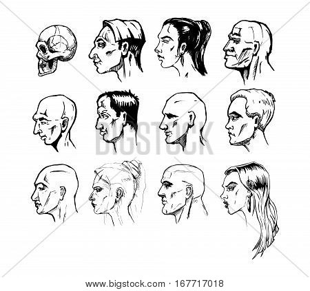 Set of different male and female faces. Vector illustration in ink hand drawn style. Profile view.