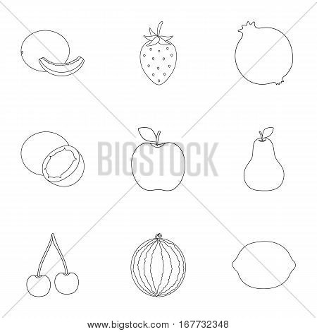 Fruits set icons in outline style. Big collection of fruits vector symbol stock