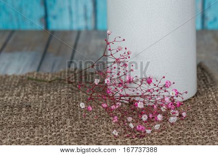 Close up of Gypsophillia (Baby's Breath) flowers laying next to a white vase