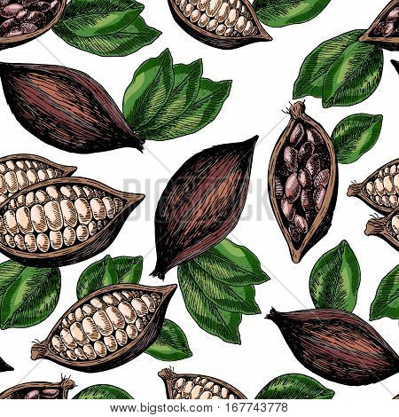 Vector seamless pattern of cocoa beans and leaves. Hand drawn colored engraved art. Healthy beauty hair nutrition. design your fashion care products branding identity advertisement promotion.