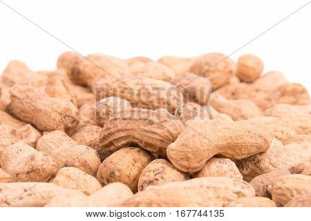 Peanut closeup on a white background. Groundnut