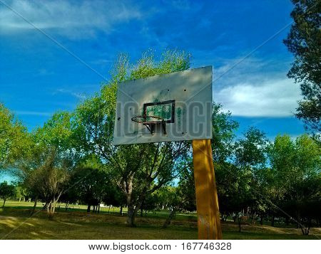 Side view of basketball basket surrounded by trees and grass, an ideal place for sports
