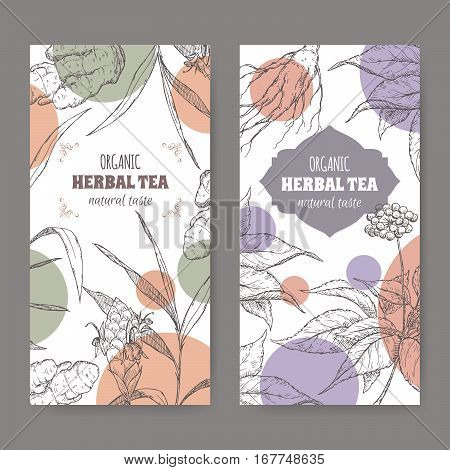 Set of two vector herbal tea labels with ginger and ginseng hand drawn sketch.