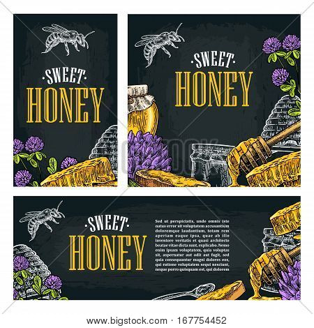 Set horizontal vertical and square and posters with honey honeycomb jar spoon bee. Isolated on the dark background. Vector color hand drawn vintage engraving illustration for label flyers menu