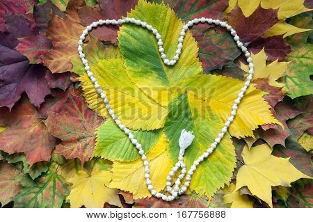 White mala rosary on the autumn leaves. Mantra. One hundred and eight beads shaped into a heart.
