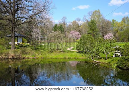 Beautiful spring garden with pond, blooming trees, alcove at sunny day