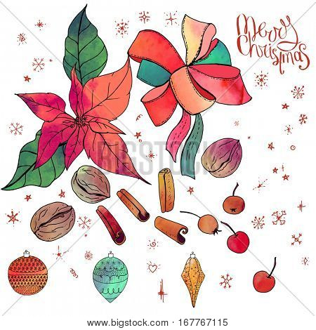 Set with isolated Christmas objects - flowers, spice,fruits and decoration. Vector, hand drawn. Merry Christmas calligraphy phrase. Red,green, black and brawn.Watercolor effect.