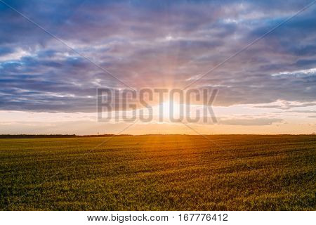 Natural Sunset Sunrise Over Field Or Meadow. Bright Dramatic Sky Over Ground. Countryside Landscape Under Scenic Colorful Sky At Sunset Dawn Sunrise. Skyline, Horizon. Warm Colours.