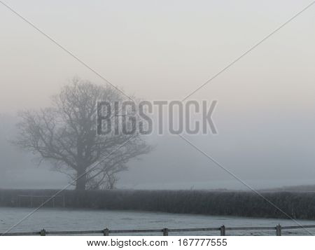 English country side on a cold frosty morning