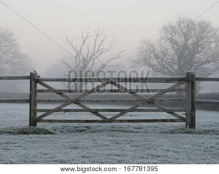 Five bar gate in the English country side on a cold frosty morning