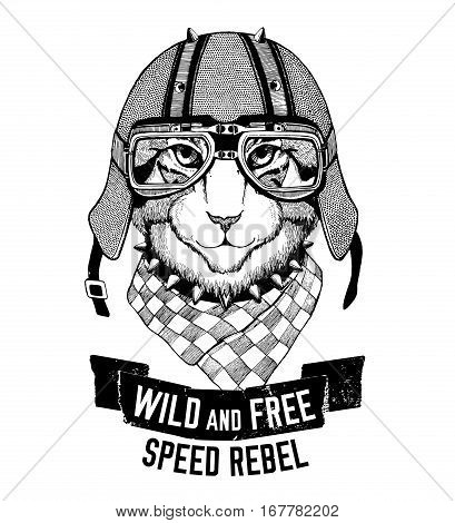 Wild tiger Wild cat Be wild and free T-shirt emblem, template Biker, motorcycle design Hand drawn image