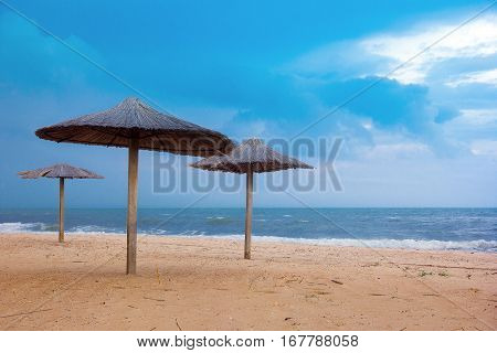 sea coast with thatched umbrellas and blue sky