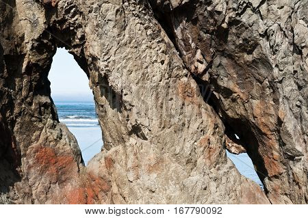 close view of rock with holes in Ruby Beach of Olympic National Park Washington State USA