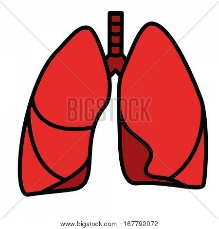 Human Lungs Symbol. Red Vector linear thin line illustration