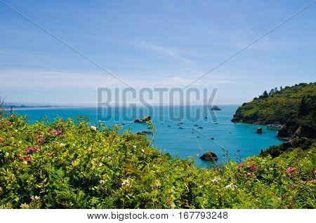 Trinidad Bay on the Northern Coastline Trinidad California