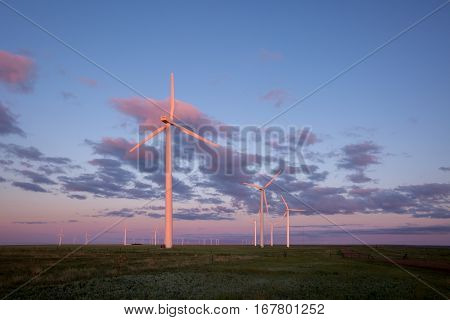 The morning sunlight graces the wind turbines giving them a pink hue.
