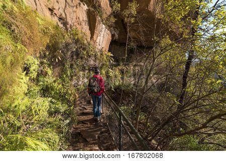 Hiking In Blue Mountain, Australia