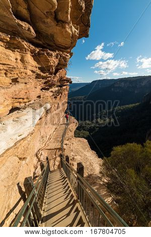 Hiking in Blue Mountain Australia. Woman on Wentworth Falls hiking track enjoying the view over Blue Mountains National Park with eucalyptus forest