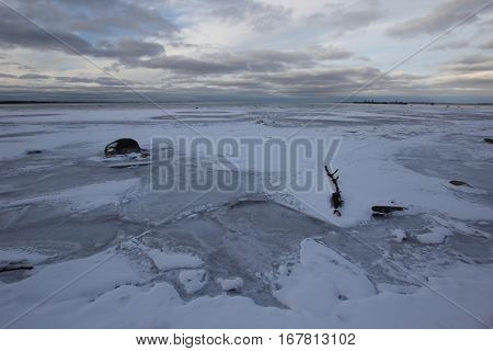 Frozen log and stones in shallow water, Lake Michigan
