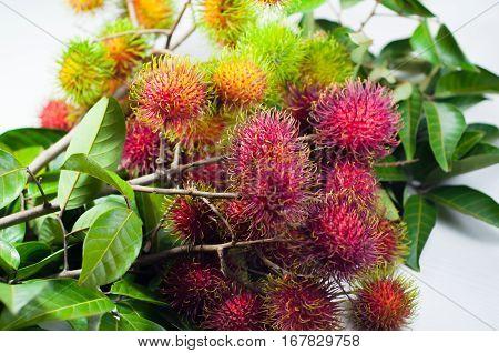 closeup rambutan. rambutan from the farm, to market