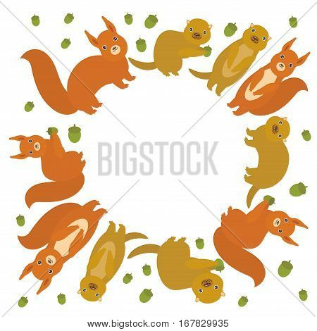 round frame for your text Set of funny red squirrels with Gopher ground squirrel fluffy tail with acorn isolated on white background. Vector illustration