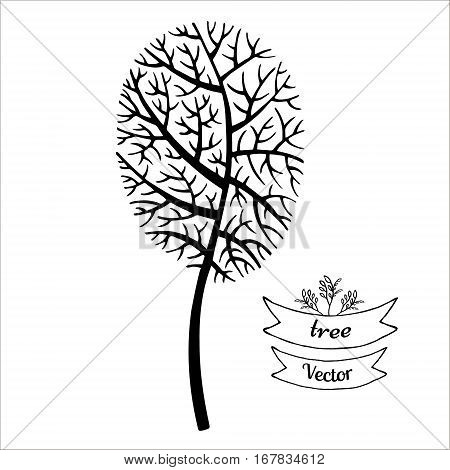 Tree vector black silhouette isolated on white background. Hand drawn sketch illustration.The crown of the tree in a shape of an oval.