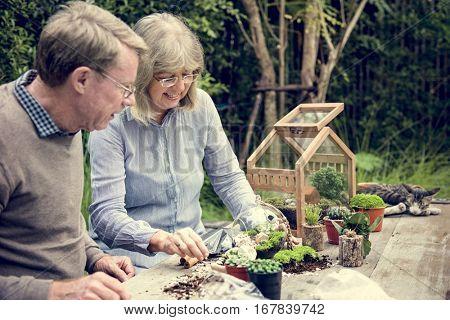 Terrarium Miniature Botanical Horticulture Grow