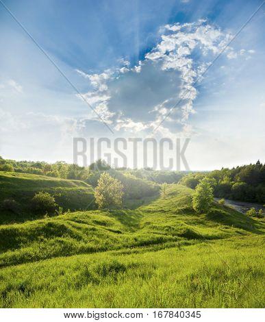 Landscape - meadow  blue sky field and grass