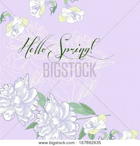 Spring background with white  peonies and lilac. Vector illustration