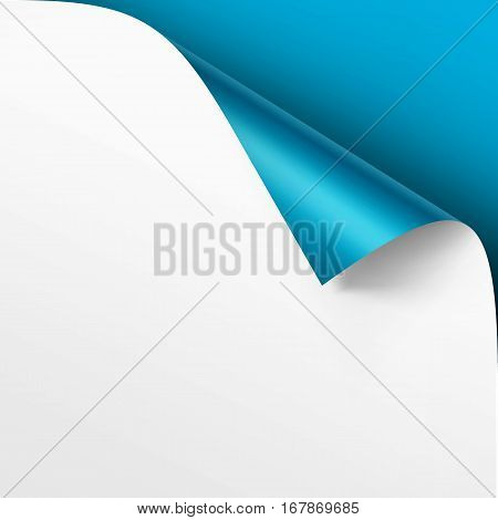 Vector Curled corner of White paper with shadow Mock up Close up Isolated on Bright Light Blue Background