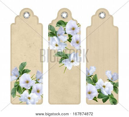 Set of decorative tags or bookmarks with white flowers. Floral wedding banners