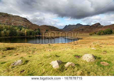 Blea Tarn In Cumbria