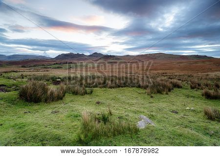 Dawn At Birker Fell In Cumbria